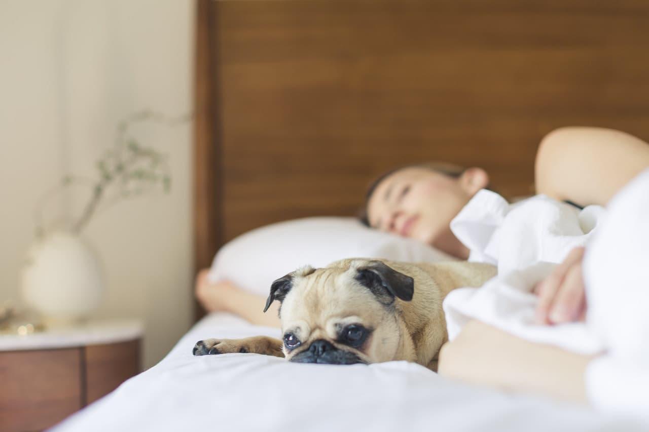 Conseils pour mieux dormir
